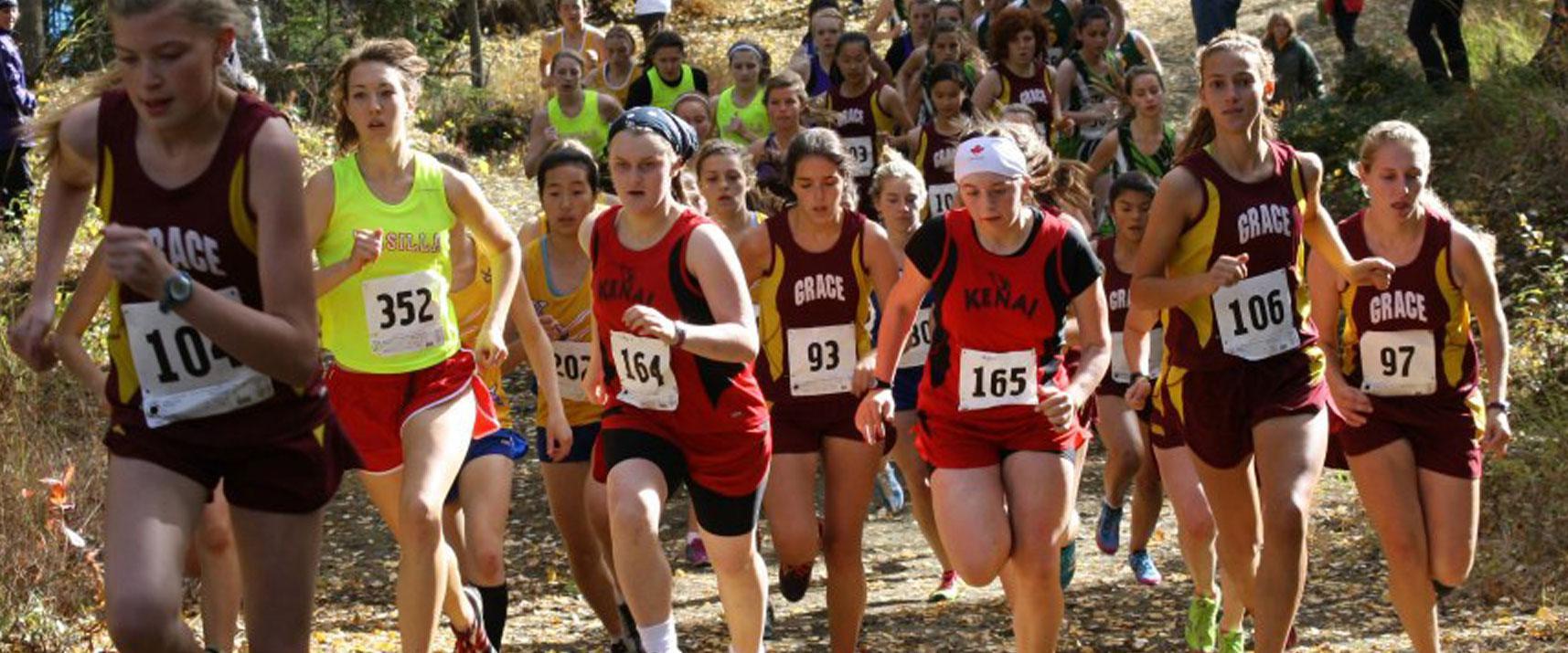 Tsalteshi Trails Association